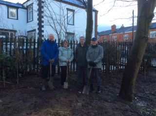 Wigan Rotary planting trees at Spring View