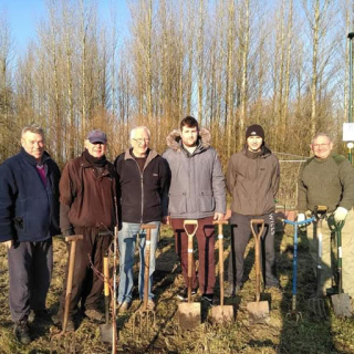 Wigan Tree Planters